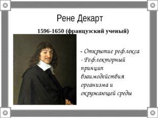 Рене Декарт 1596-1650 (французский ученый) - Открытие рефлекса - Рефлекторны