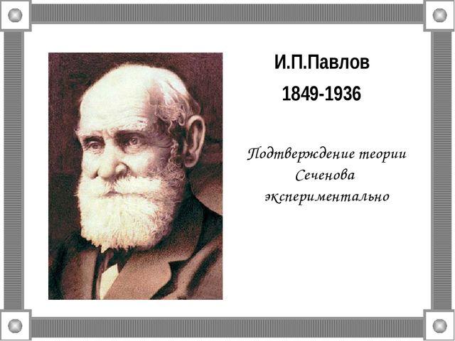 И.П.Павлов 1849-1936 Подтверждение теории Сеченова экспериментально