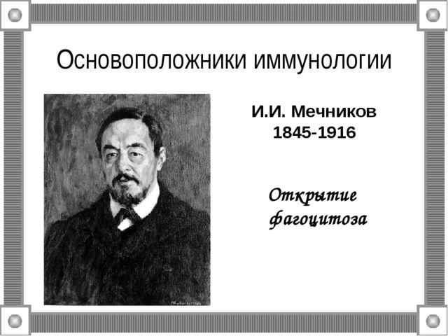 Основоположники иммунологии Открытие фагоцитоза И.И. Мечников 1845-1916