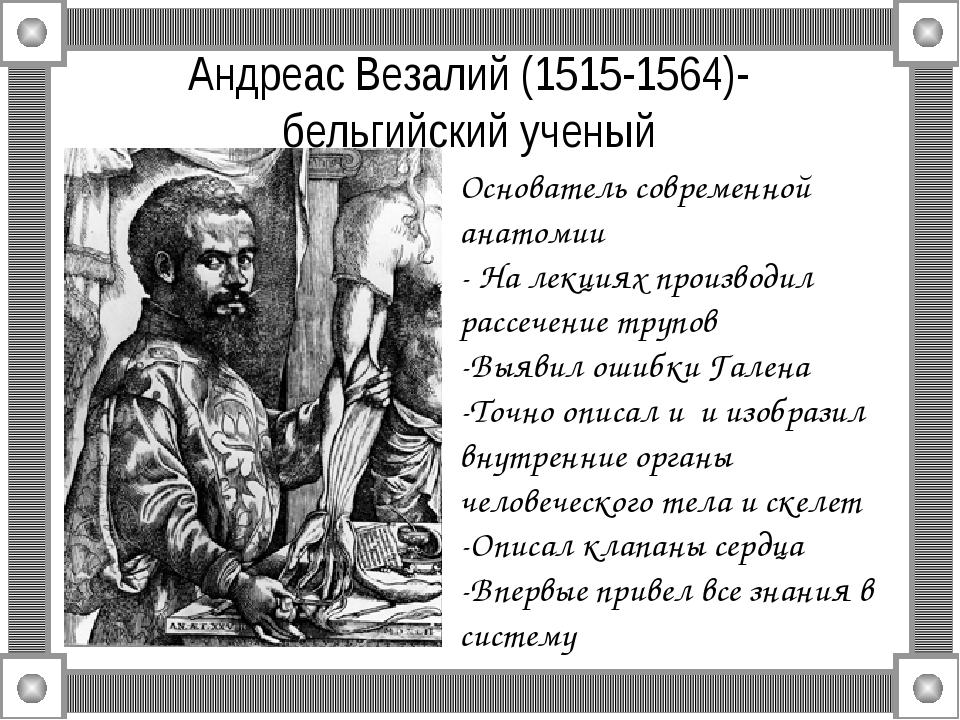 Андреас Везалий (1515-1564)- бельгийский ученый Основатель современной анатом...