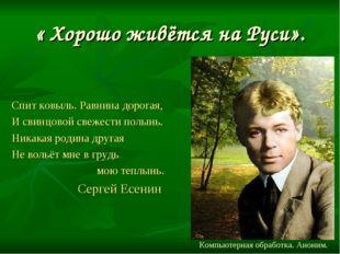 « Хорошо живётся на Руси». Спит ковыль. Равнина дорогая, И свинцовой свежести