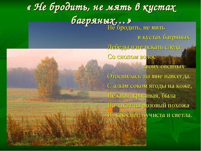« Не бродить, не мять в кустах багряных…» Не бродить, не мять в кустах багрян...