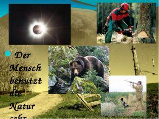 Der Mensch benutzt die Natur sehr breit. Besonders in Sibirien wird Taiga ben