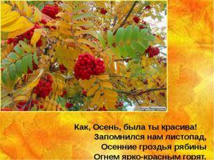 Как, Осень, была ты красива! Запомнился нам листопад, Осенние гроздья рябины