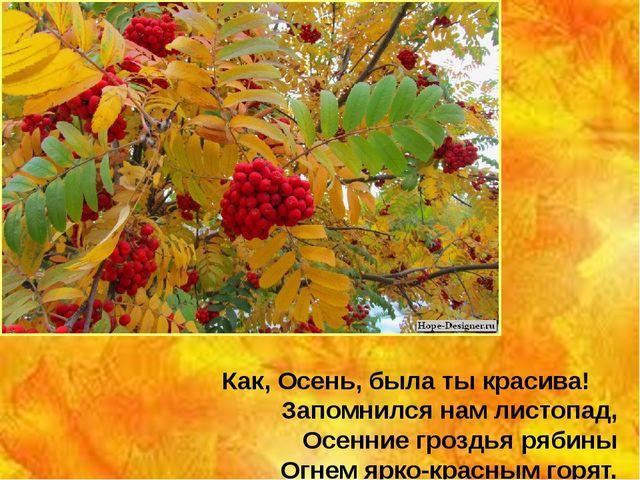 Как, Осень, была ты красива! Запомнился нам листопад, Осенние гроздья рябины...