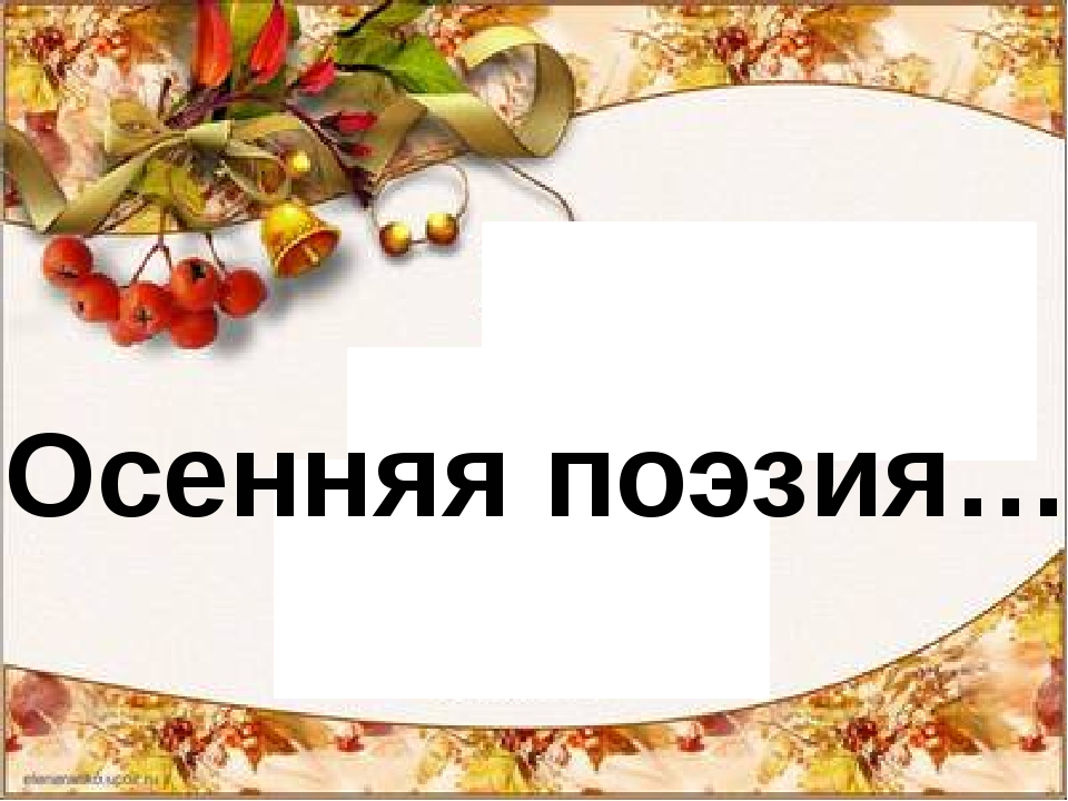 Осенняя поэзия…
