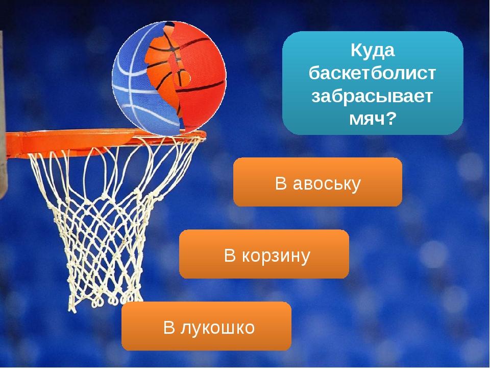 Куда баскетболист забрасывает мяч? В корзину В авоську В лукошко