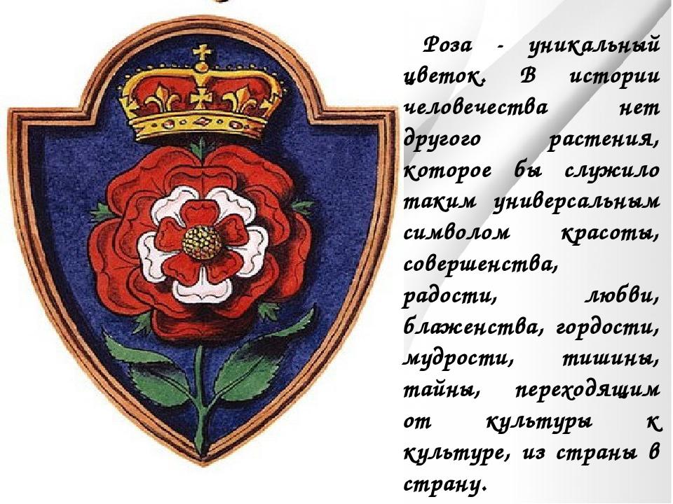 Роза - уникальный цветок. В истории человечества нет другого растения, котор...