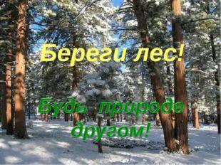 Береги лес!