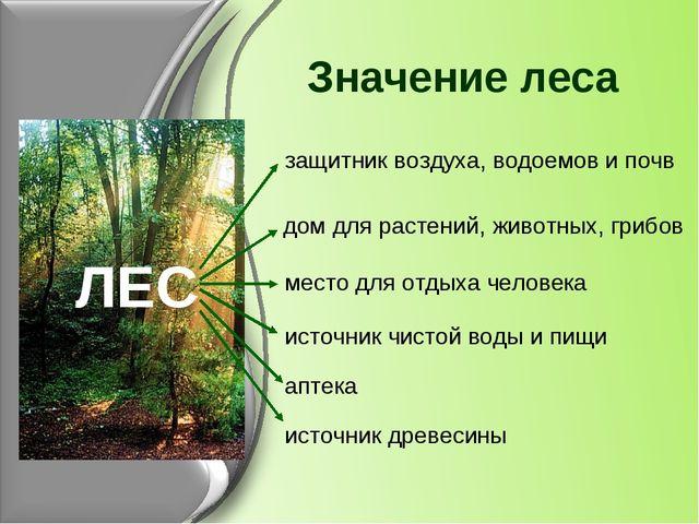 Значение леса защитник воздуха, водоемов и почв ЛЕС дом для растений, животны...