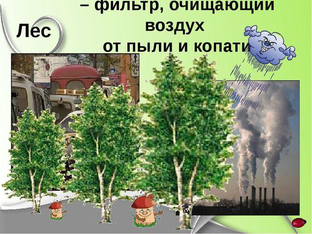 – фильтр, очищающий воздух от пыли и копати Лес