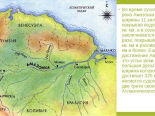 Во время сухого сезона река Амазонка достигает ширины 11 километров, покрыва