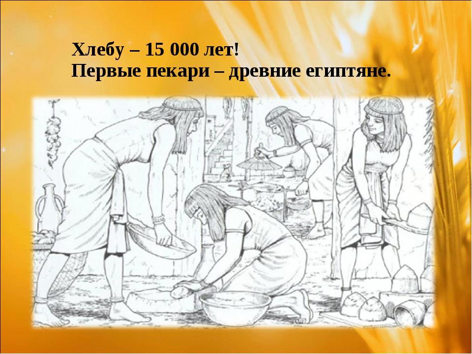 Хлебу – 15 000 лет! Первые пекари – древние египтяне.
