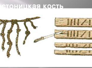 Вестоницкая кость