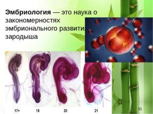 Эмбриология — это наука о закономерностях эмбрионального развития зародыша