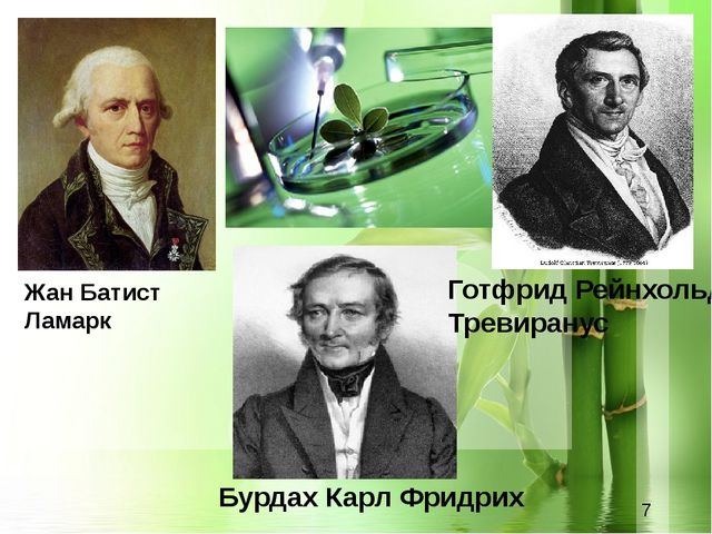 Жан Батист Ламарк Готфрид Рейнхольд Тревиранус Бурдах Карл Фридрих