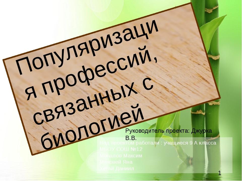Над проектом работали : учащиеся 9 А класса МБОУ СОШ №12 Мочалов Максим Маков...