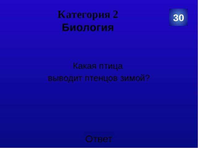 30 Категория 5 Загадки Под каким деревом сидит заяц во время дождя? Ответ