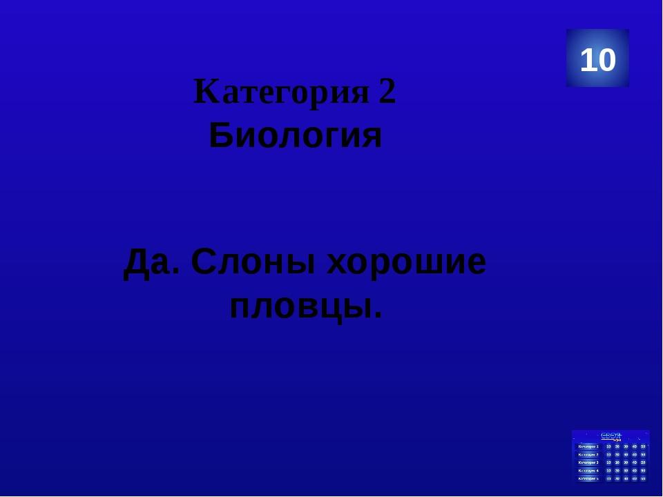 Категория 4 Русский язык Сколько букв в русском алфавите? 40 Ответ
