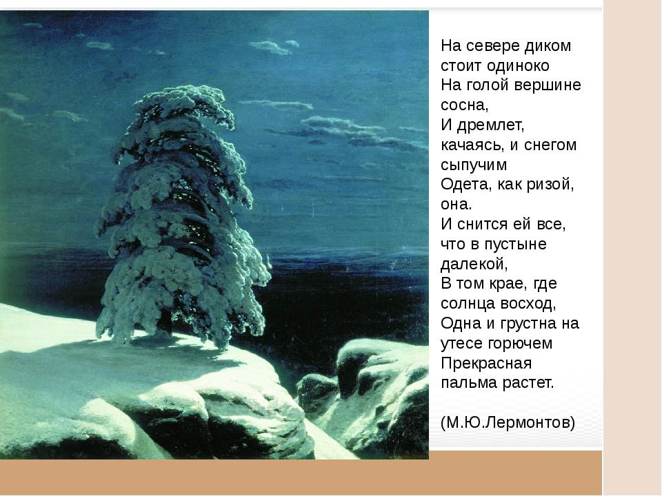 На севере диком стоит одиноко На голой вершине сосна, И дремлет, качаясь, и...