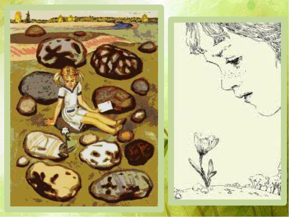 Неизвестный цветок андрея платонова с картинкой