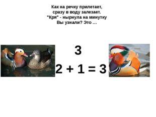 """3 2 + 1 = 3 Как на речку прилетает, сразу в воду залезает. """"Кря"""" - нырнула н"""