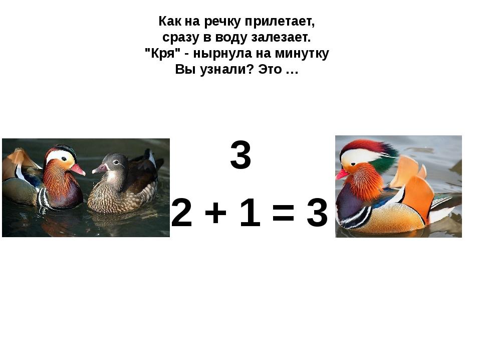 """3 2 + 1 = 3 Как на речку прилетает, сразу в воду залезает. """"Кря"""" - нырнула н..."""