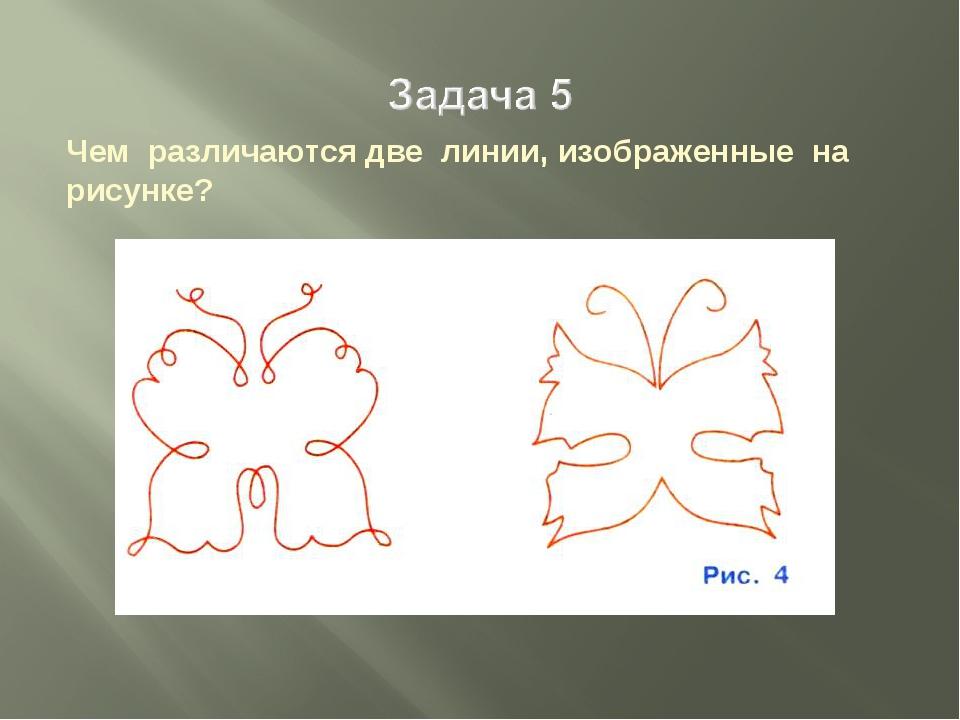 Чем различаются две линии, изображенные на рисунке?