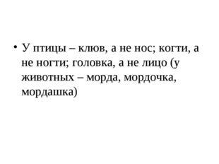 У птицы – клюв, а не нос; когти, а не ногти; головка, а не лицо (у животных –
