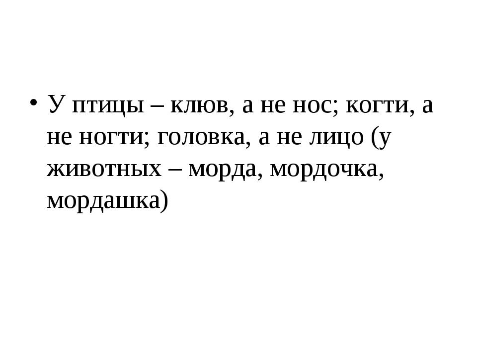 У птицы – клюв, а не нос; когти, а не ногти; головка, а не лицо (у животных –...