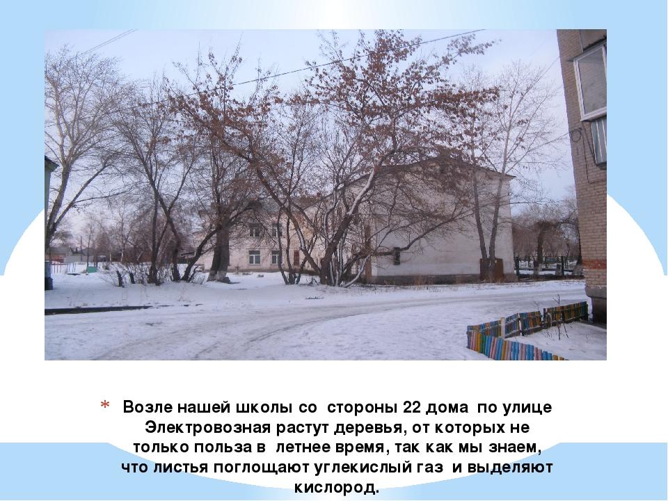 Возле нашей школы со стороны 22 дома по улице Электровозная растут деревья, о...