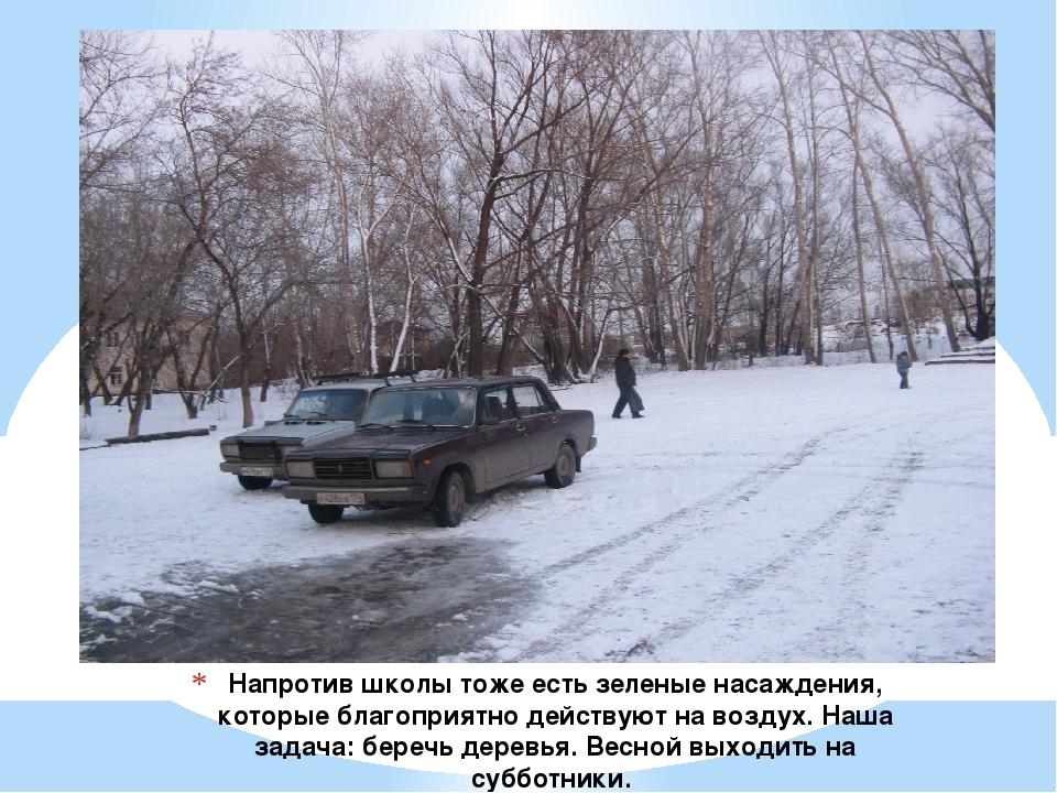 Напротив школы тоже есть зеленые насаждения, которые благоприятно действуют н...