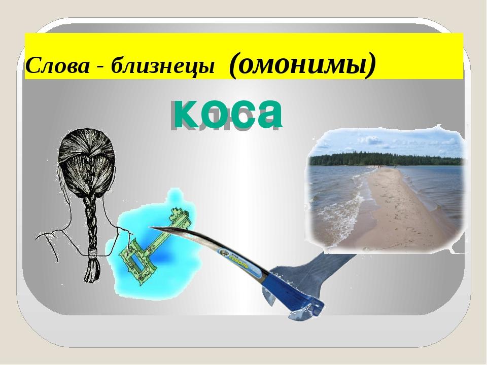 Слова - близнецы (омонимы) Ключ коса