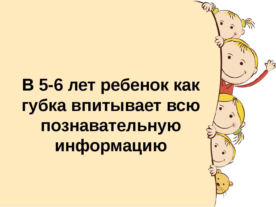 В 5-6 лет ребенок как губка впитывает всю познавательную информацию