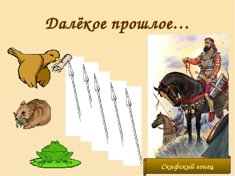 Далёкое прошлое… Скифский гонец
