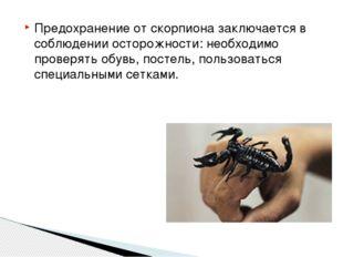 Предохранение от скорпиона заключается в соблюдении осторожности: необходимо