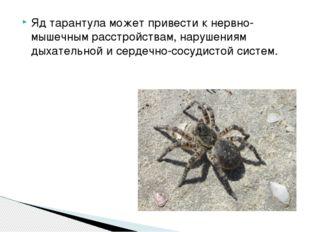 Яд тарантула может привести к нервно-мышечным расстройствам, нарушениям дыхат