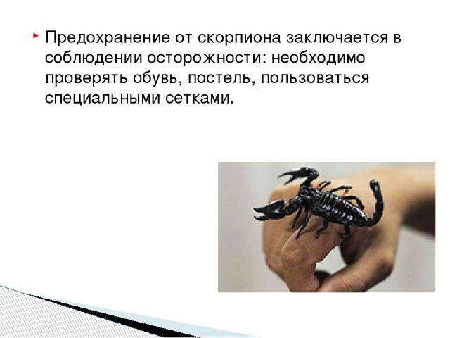 Предохранение от скорпиона заключается в соблюдении осторожности: необходимо...