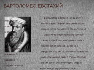 БАРТОЛОМЕО ЕВСТАХИЙ Бартоломео Евстахий - 1510-1574 г. - итальянский анатом и