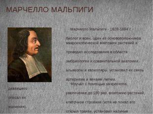 МАРЧЕЛЛО МАЛЬПИГИ Марчелло Мальпиги - 1628-1694 г. - итальянский биолог и вра