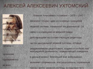 АЛЕКСЕЙ АЛЕКСЕЕВИЧ УХТОМСКИЙ Алексей Алексеевич Ухтомский – 1875 – 1942 г. -