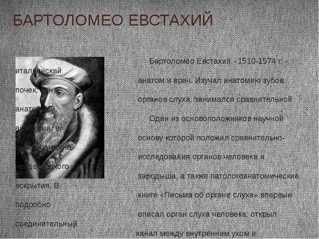 БАРТОЛОМЕО ЕВСТАХИЙ Бартоломео Евстахий - 1510-1574 г. - итальянский анатом и...