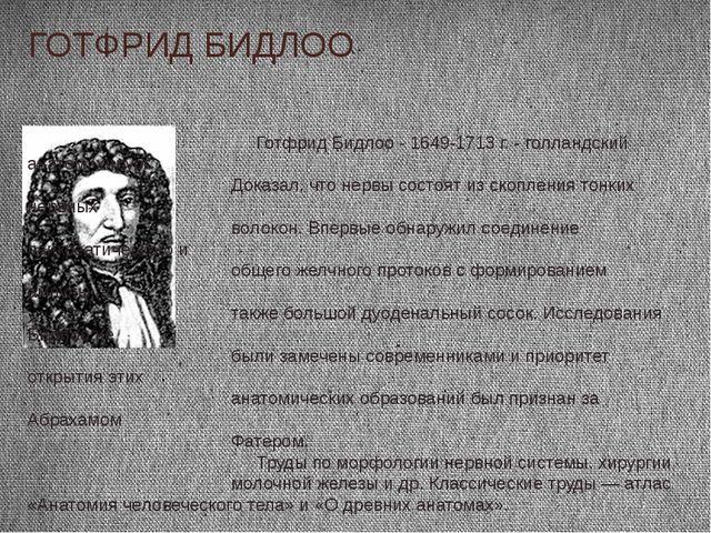 ГОТФРИД БИДЛОО Готфрид Бидлоо - 1649-1713 г. - голландский анатом, хирург. До...