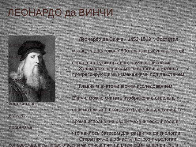 ЛЕОНАРДО да ВИНЧИ Леонардо да Винчи - 1452-1519 г. Составил классификацию мыш...