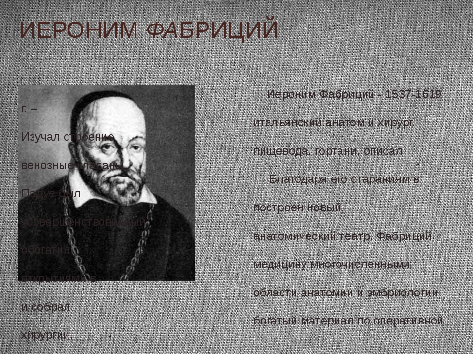 ИЕРОНИМ ФАБРИЦИЙ Иероним Фабриций - 1537-1619 г. – итальянский анатом и хирур...