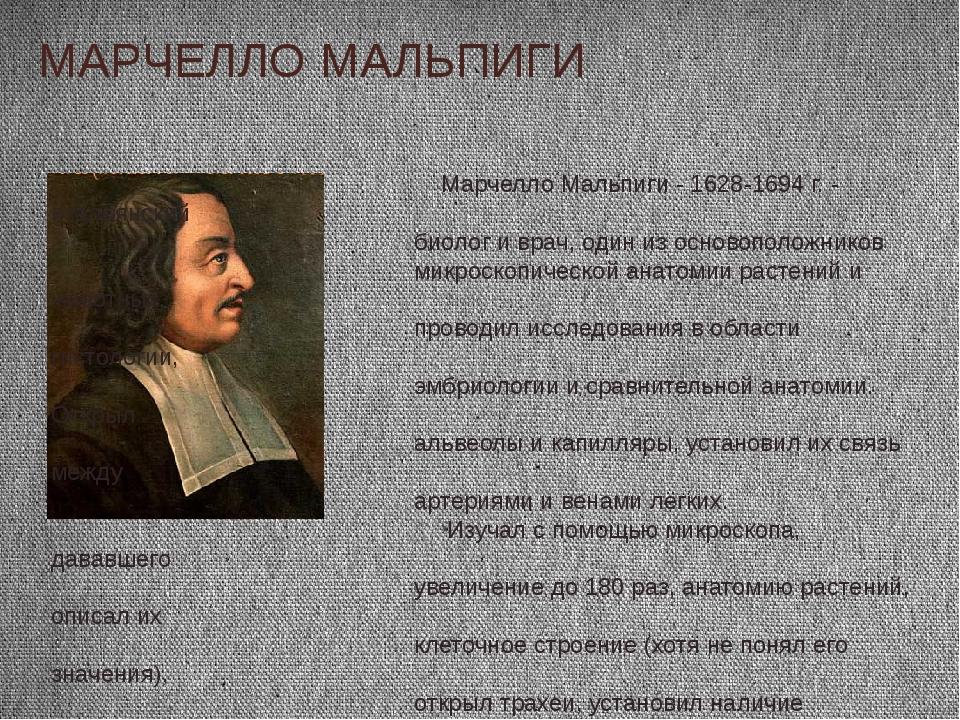 МАРЧЕЛЛО МАЛЬПИГИ Марчелло Мальпиги - 1628-1694 г. - итальянский биолог и вра...
