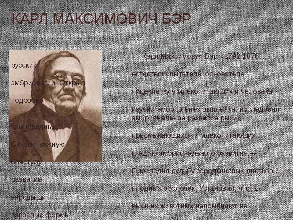 КАРЛ МАКСИМОВИЧ БЭР Карл Максимович Бэр - 1792-1876 г. – русский естествоиспы...