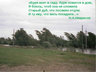 «Буря воет в саду, буря ломится в дом, Я боюсь, чтоб она не сломила Старый ду