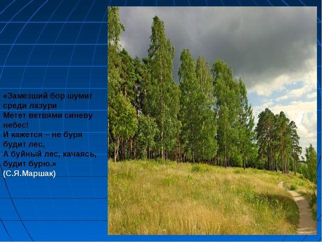 «Замезший бор шумит среди лазури Метет ветвями синеву небес! И кажется – не б...