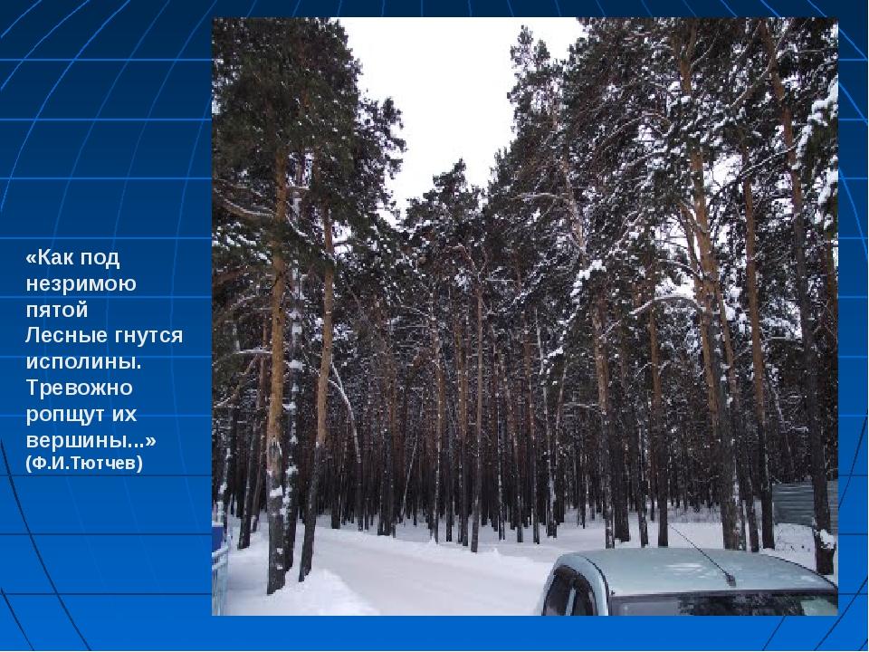 «Как под незримою пятой Лесные гнутся исполины. Тревожно ропщут их вершины......